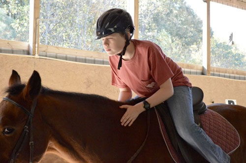 Hippotherapy | The Lionheart School